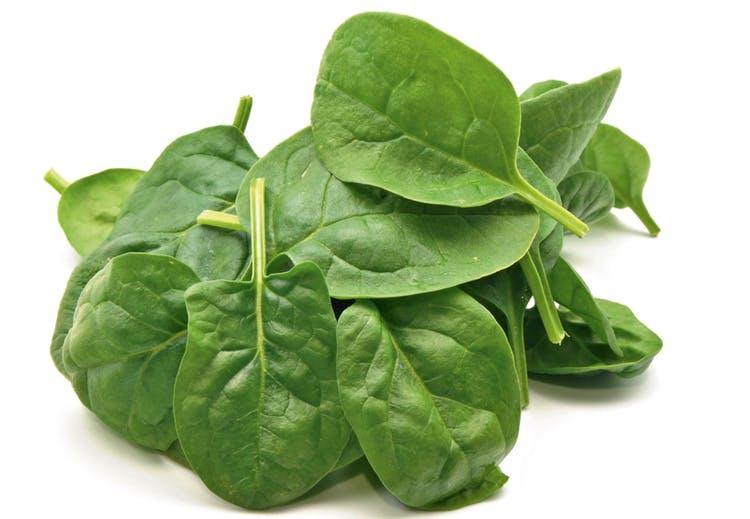 spinatblade